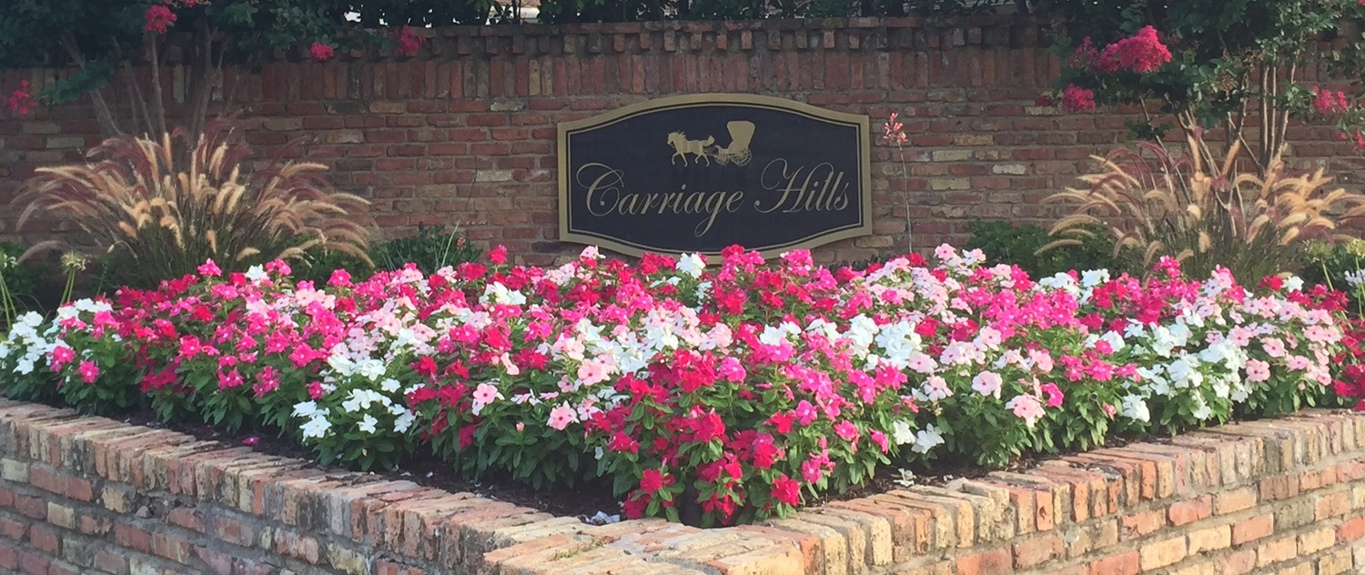 Carriage Hills Subdivision Plano Texas