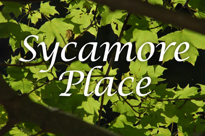 Sycamore Place, Fairview Texas