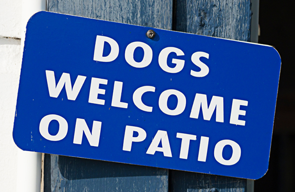 Elegant Dogs Welcome On Patio Sign Posted Outside Cafe