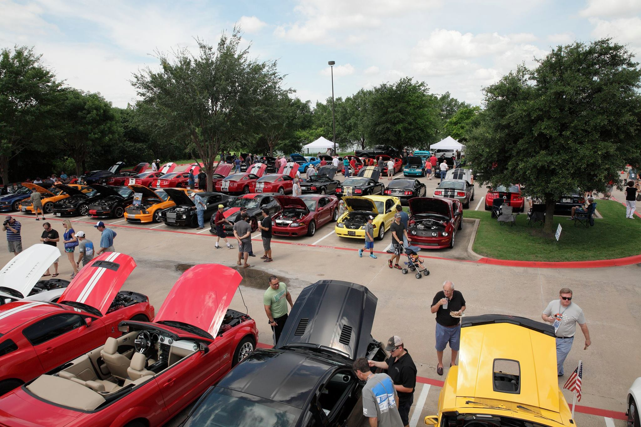Shelby Car Show in Plano