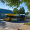 "DART hosting ""blue carpet"" event for Express Bus patrons in NW Plano"